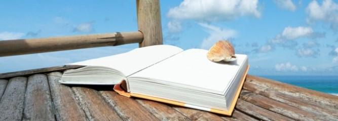 Summer-Reading-Dock-667x239