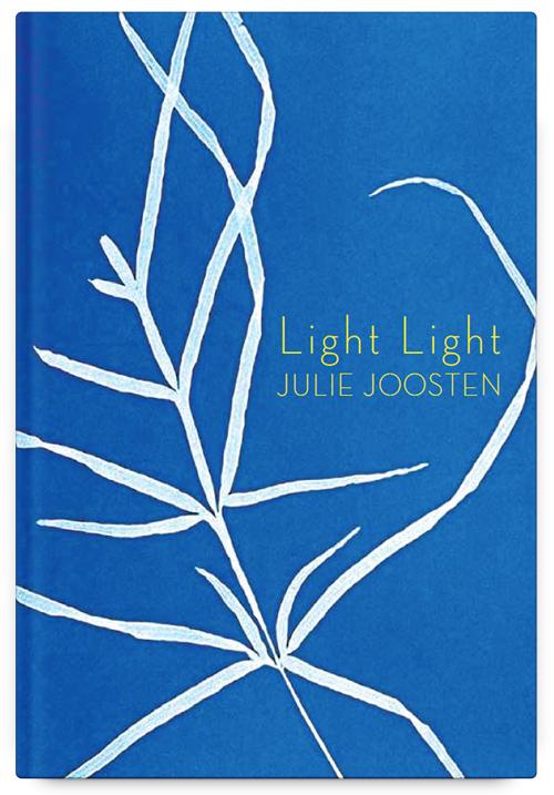 Light Light by Julie Joosten