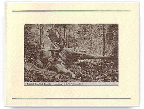 The Hunt by Jason Dickson
