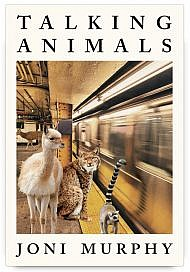 Talking Animals by Joni Murphy