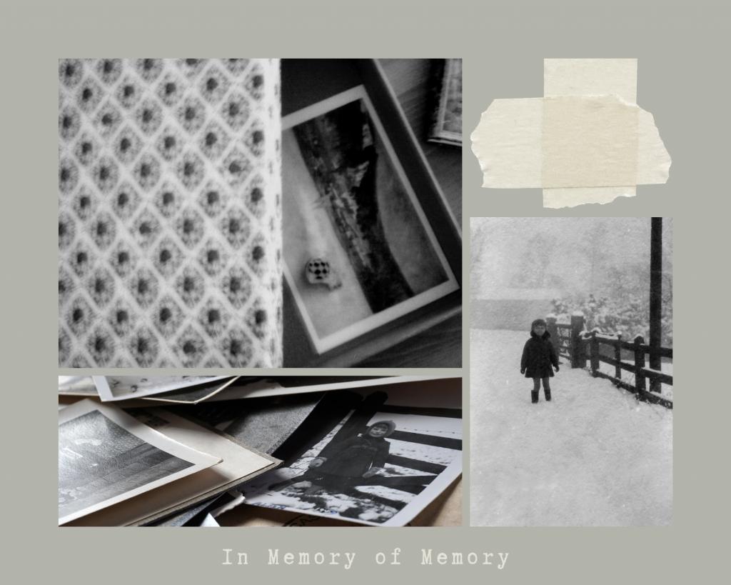 In Memory of Memory by Maria Stepanova, Translated by Sasha Dugdale