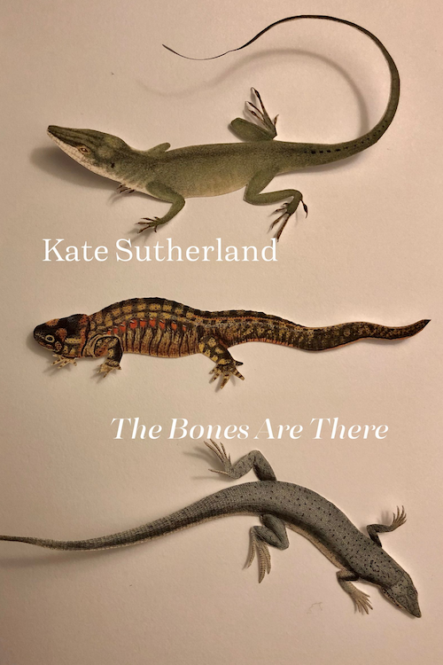 The Bones Are There by Kate Sutherland